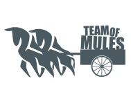 team of mules